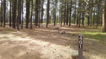 az237 7 campsite