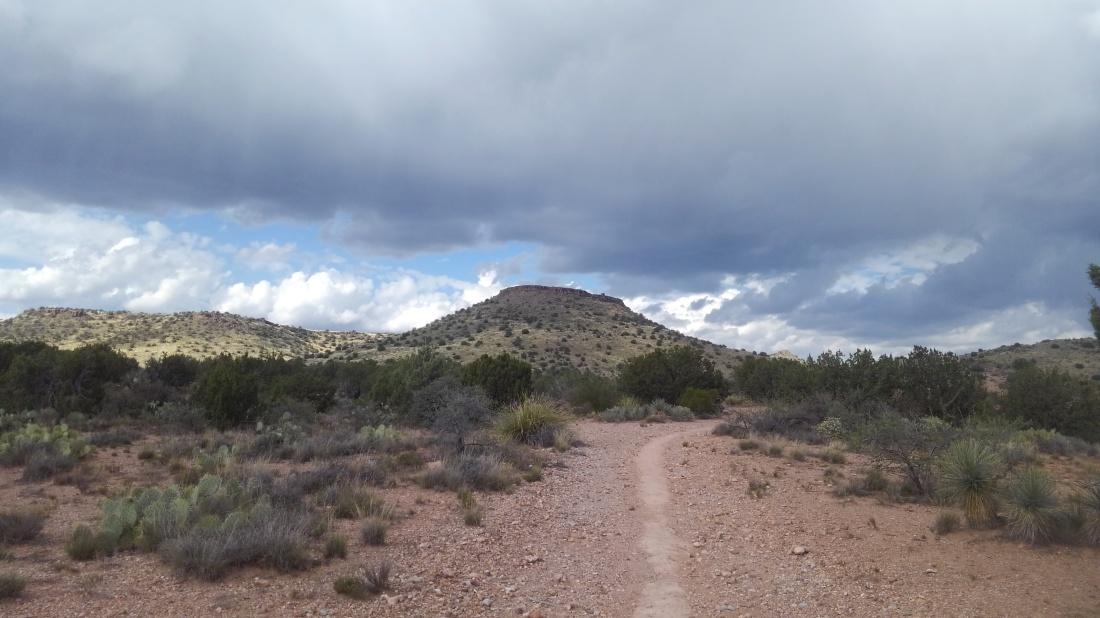 FR9500g trail